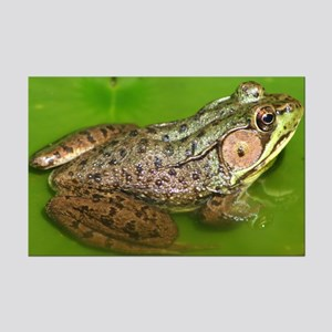 """""""Amphibian"""" Mini Poster"""