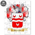 Springle Puzzle