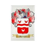 Springet Rectangle Magnet (10 pack)