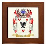 Spittel Framed Tile