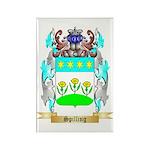 Spilling Rectangle Magnet (100 pack)