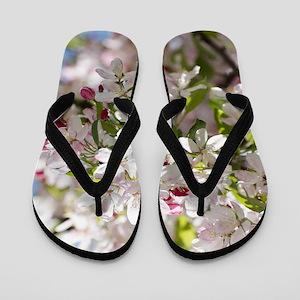 Spring Apple Tree Blossoms Flip Flops