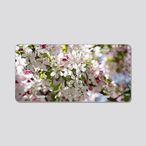 Spring Apple Tree Blossoms Aluminum License Plate