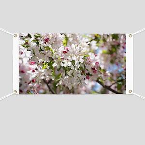 Spring Apple Tree Blossoms Banner