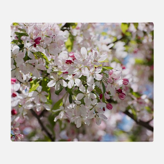 Spring Apple Tree Blossoms Throw Blanket