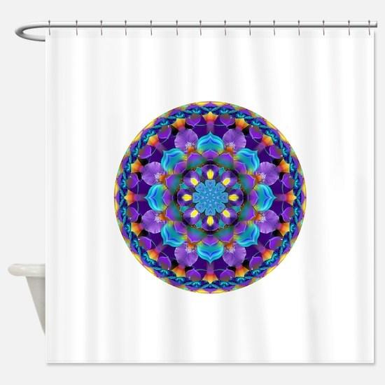 Daily Focus 2.22.16 A2 Shower Curtain