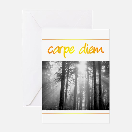 Care Diem Seize the day Greeting Card