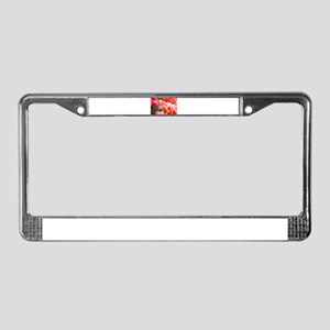 Red Field Roy License Plate Frame