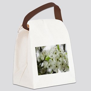 Speckled Sakura Canvas Lunch Bag