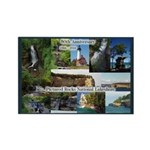 Pictured Rocks 50th Anniversary Magnets
