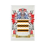 Sotomayor Rectangle Magnet (100 pack)