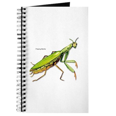 Praying Mantis Insect Journal