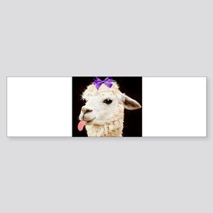 Alpaca or LLama? Bumper Sticker
