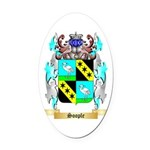 Soople Oval Car Magnet