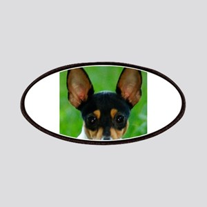 toy fox terrier Patch