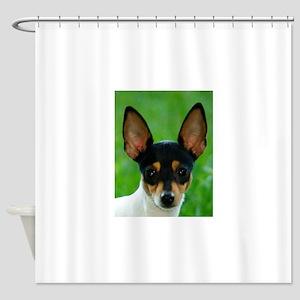toy fox terrier Shower Curtain