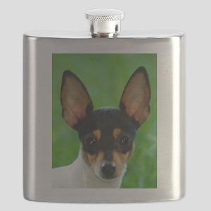 toy fox terrier Flask