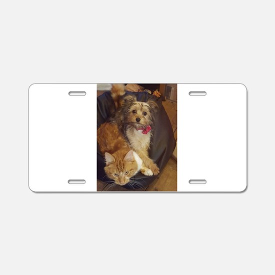 Funny Chinese crested Aluminum License Plate