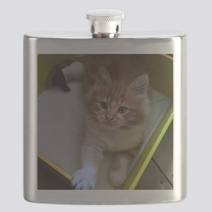 kitty in a box Flask