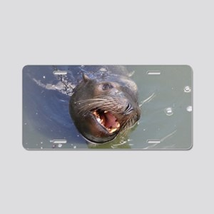 California Sea Lion Aluminum License Plate