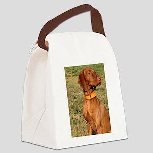 vizsla 2 Canvas Lunch Bag