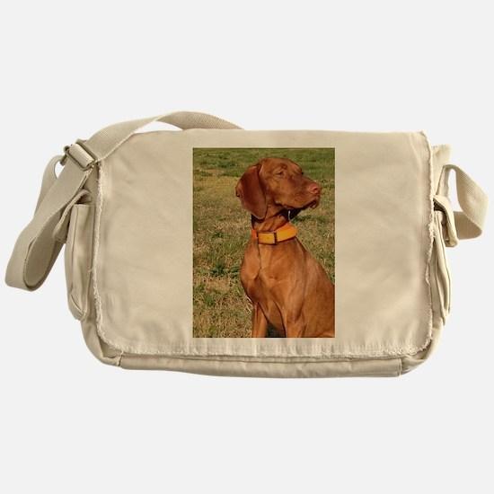 vizsla 2 Messenger Bag