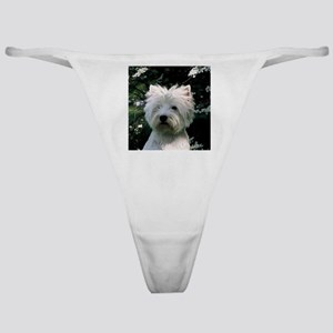west highland white terrier Classic Thong