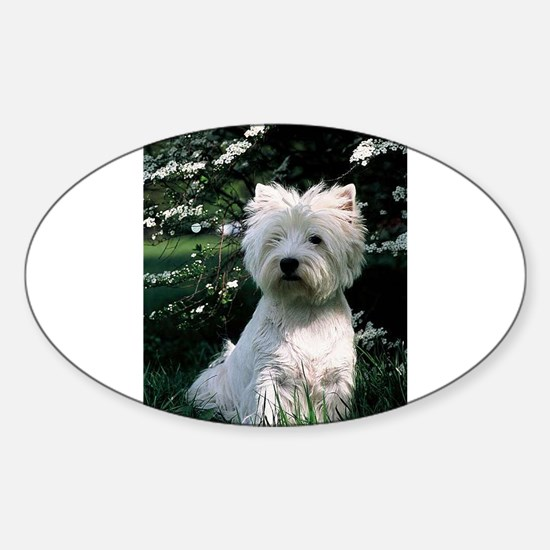 4 siting westie Decal