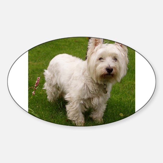 6 full westie Decal