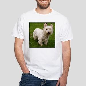 6 full westie T-Shirt