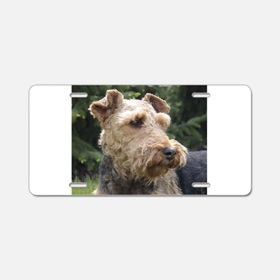 welsh terrier Aluminum License Plate