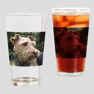 welsh terrier Drinking Glass