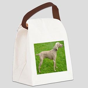 full 2 weimaraner Canvas Lunch Bag