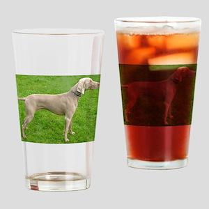 full 2 weimaraner Drinking Glass