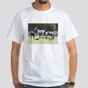 Xoloitzcuintli group T-Shirt