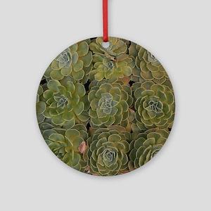 Echeverias Round Ornament