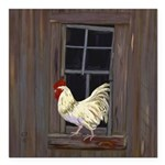 Rooster in the Window Square Car Magnet 3