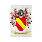 Solans Rectangle Magnet (100 pack)