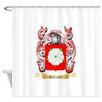 Sobieski Shower Curtain