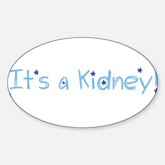 Its a Kidney! (blue) Decal