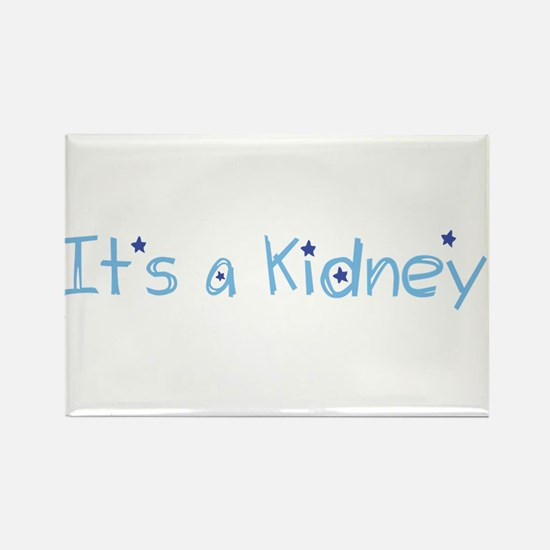 Its a Kidney! (blue) Magnets