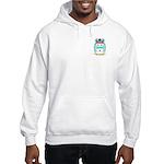 Snowdone Hooded Sweatshirt