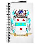 Snowdone Journal