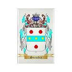 Snowdin Rectangle Magnet (100 pack)