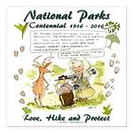 National Parks Centennial Square Car Magnet 3