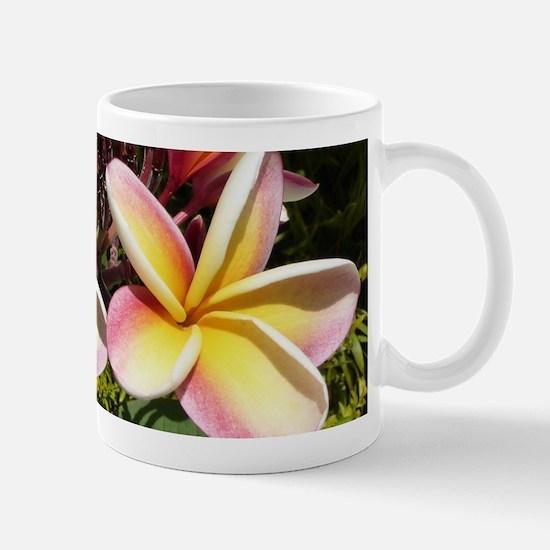 Plumeria Mugs