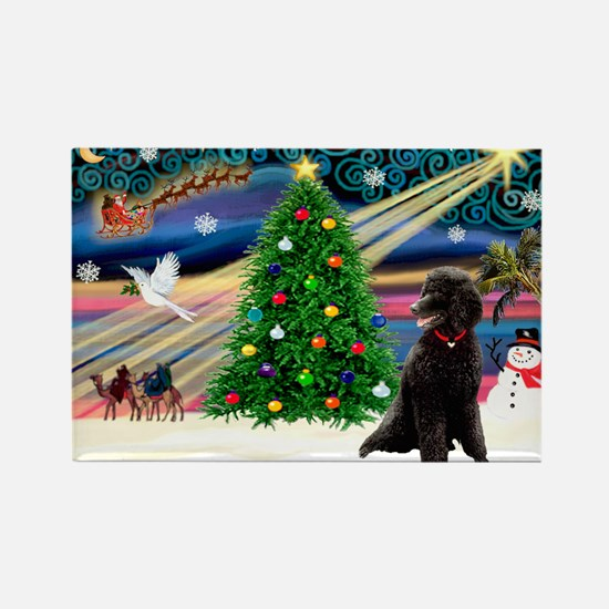 XmasStar/Poodle (ST-B) Rectangle Magnet