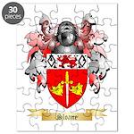 Sloane Puzzle