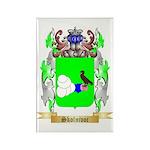Skolnivoc Rectangle Magnet (100 pack)