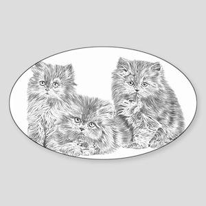 Three Persian kittens Sticker (Oval)